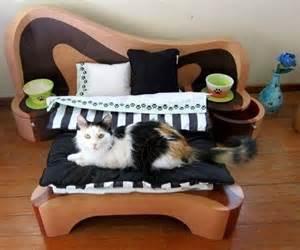 cat bedroom four legged children pinterest bed bedroom cat cute image 615858 on favim com