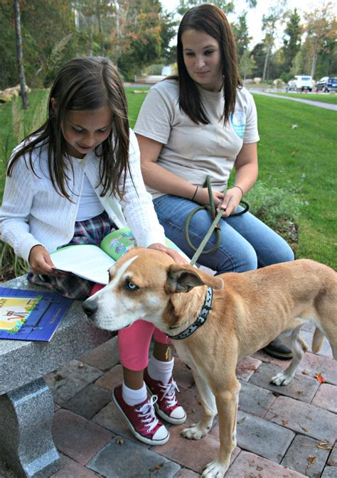 shelters in ri golocalprov animal rescue ri launches reading program benefiting students animals