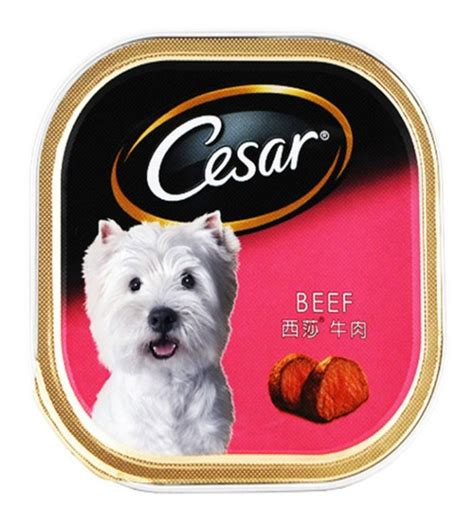Food Cesar Chicken Vegetables 100gr cesar food review 28 images cesar senior with chicken