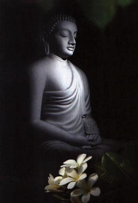 sacred buddha images  pinterest spirituality