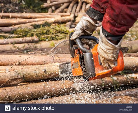 Loggers Stock Photos Amp Loggers Stock Images Alamy