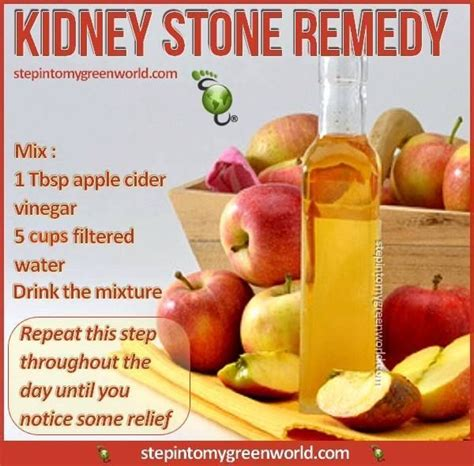 Apple Cider Vinegar Detox To Pass Test by Do You Anyone Who Struggles With Kidney Stones