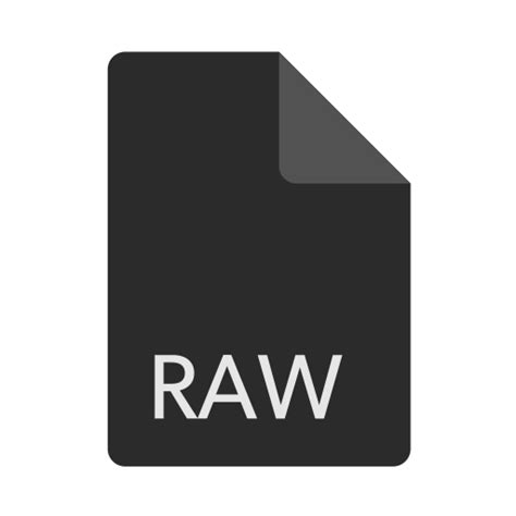 format file raw extension file format raw file icon icon search engine