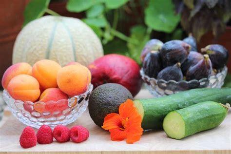 magnesio contra la osteoporosis libre de lacteos alimentacion saludable