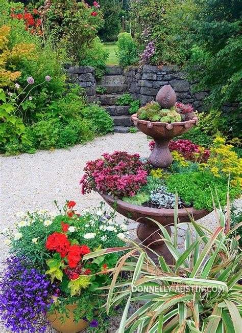 Succulent Container Garden Ideas Succulent Container Garden Ideas Photograph Succulent Cont