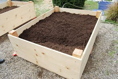 how to fill a raised garden bed how to fill a raised garden bed with the quot no dig quot method
