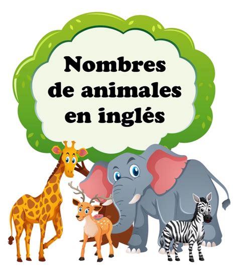 imagenes mal pensadas en ingles nombres de animales en ingl 233 s flashcards on tinycards