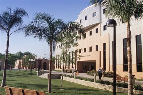 Csun Mba Statistics by Csun Today California State Northridge All