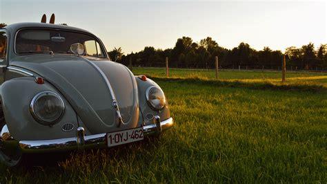 volkswagen beetle wallpaper vintage volkswagen volkswagen beetle car oldtimer vintage