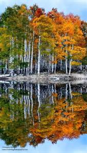 Autumn Reflection Photography