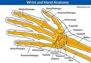 Wrist joint dislocation causes symptoms treatment pt close reduction