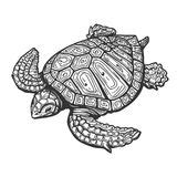 sea tr tattoo snake and skull engraving illustration stock vector