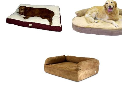 best dog bed for large dogs best dog beds for large dogs home design remodeling ideas