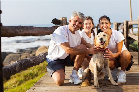 family puppy how to choose the right for your family everything at alpine publications