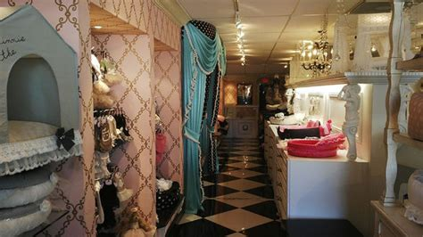 puppy boutique fort lauderdale 15 friendly hotels restaurants and shops in and around miami wheretraveler