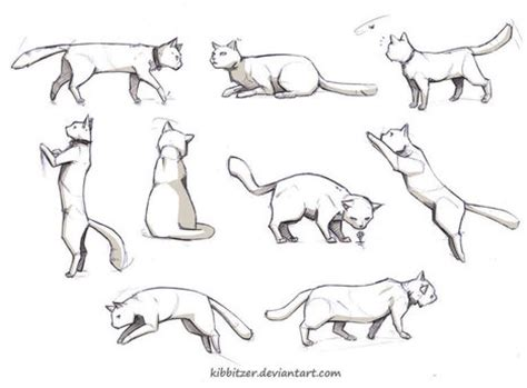 doggy gestures in urban sketching the complete guide cat drawing in drawing references and resources