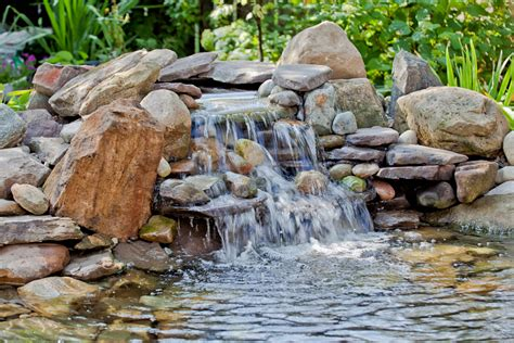 Fish For Backyard Ponds by Triyae Fish Pond In Your Backyard Various Design