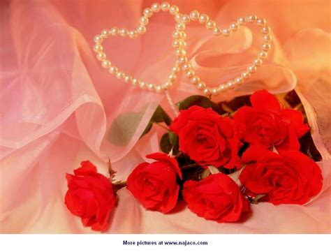 wallpaper bunga dan love خلفيات روعه منتديات عبير