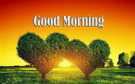 good morning hd image  toanimationscom hd