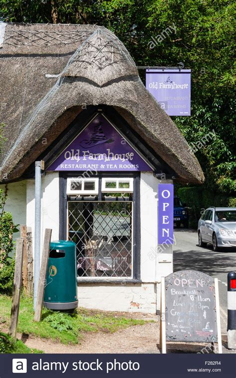 tea room forest burley new forest quot farm quot tea rooms and restaurant stock photo royalty free image