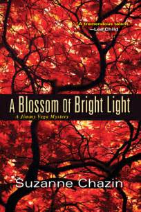 season of brightest light books a blossom of bright light jimmy mystery 2 by