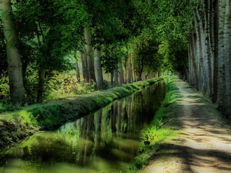imagenes de paisajes reales sitios con sombra valladolid rutas y paisajes