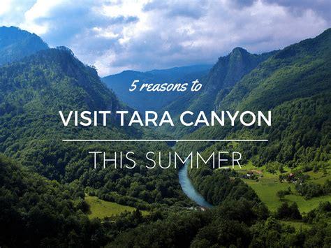five reasons to visit the 5 reasons to visit tara this summer