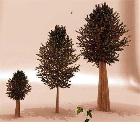 of tree evolution of tree by sdil on deviantart