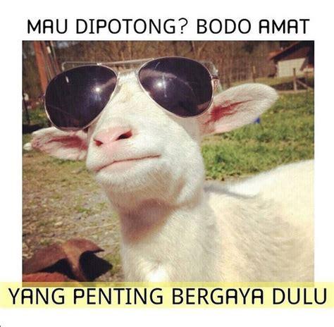 meme idul adha 2016 lucu kambing kurban pun bisa kocak rancah post