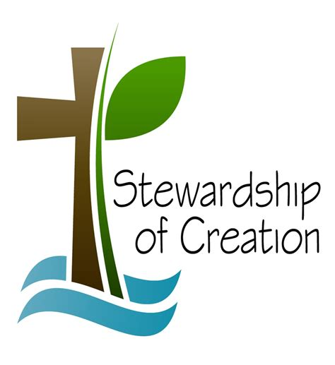 our health journal a co created wellness resource books stewardship of creation