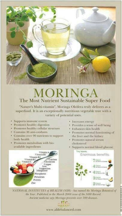Detox Symptoms While Moringa by 25 Best Ideas About Moringa Benefits On
