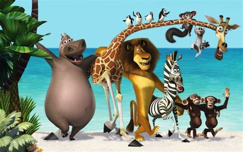film animasi zoo gambar kartun madagascar