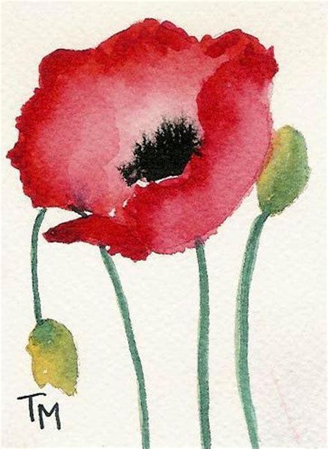 poppy watercolor art pinterest