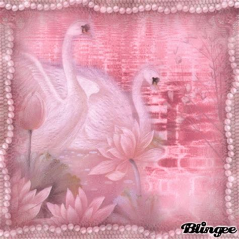 Swan Pink 7 pink swan picture 128386519 blingee