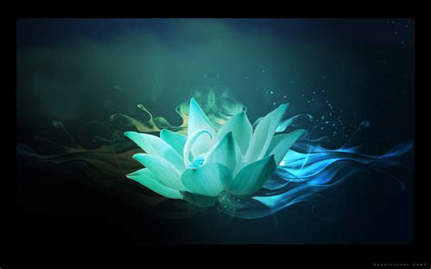 where can i buy blue lotus 2 01ct blue lotus flower best 28 images blue lotus