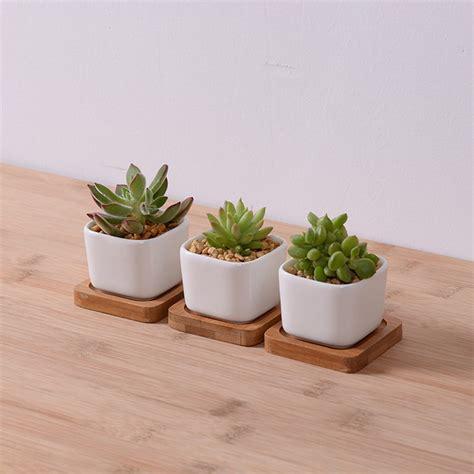 Ceramic Planter Pots For Sale by 3pcs Lot Sale Mini Ceramic Flower Planter Pot With