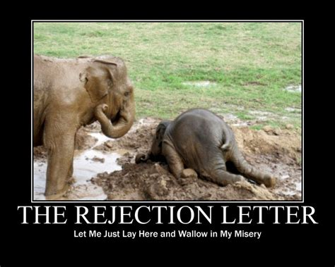 Rejection Letter Meme fridays sept 28 2012