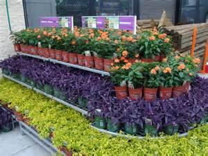 Garden Center Flowers Garden Shop About Garden Shop Florist Cambridge Ny