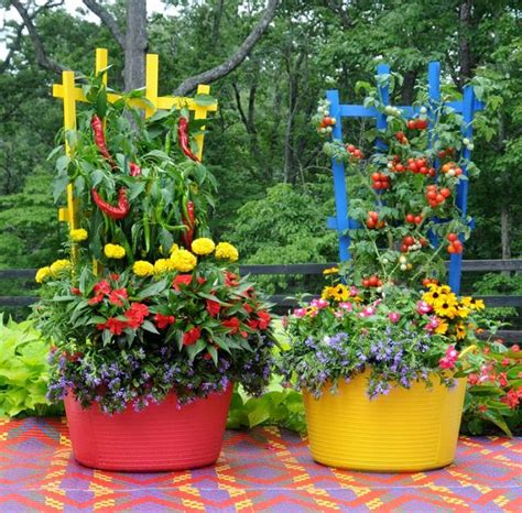15 Stunning Container Vegetable Garden Design Ideas Tips Container Vegetable Garden Ideas