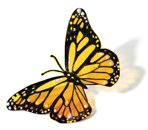 yellow pattern butterfly how to make a pretty monarch butterfly yellow butterfly
