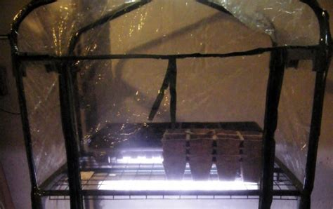 indoor greenhouse with grow lights minneapolis homestead diy inexpensive seed starting setup