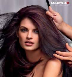 cherry black hair color 17 best ideas about black cherry hair on black
