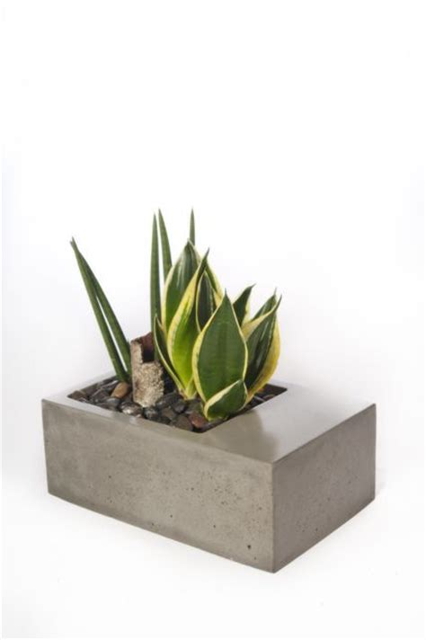 Planter Shoo by 1000 Images About Cast Concrete Planters On