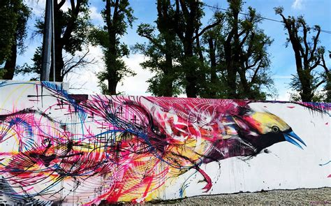 animal spray paint frenetic spray painted birds by l7m colossal