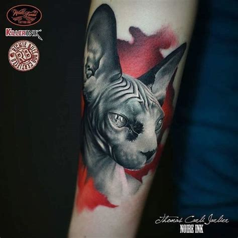 hairless cat tattoo best 25 sphynx cat ideas on