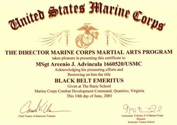 isshinkai marine combat