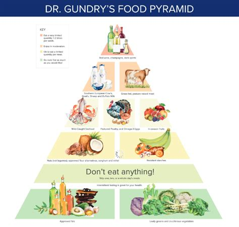 Detox With Drew Pdf by Image Result For Dr Gundry Food List Health