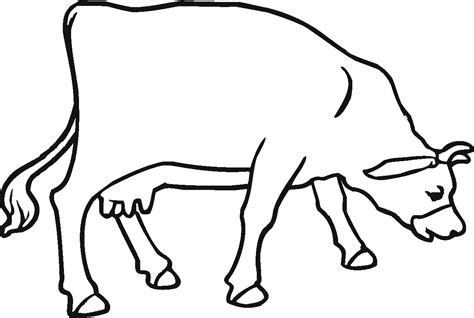 Free Printable Cow Coloring Pages For Kids Cow Printable Coloring Pages