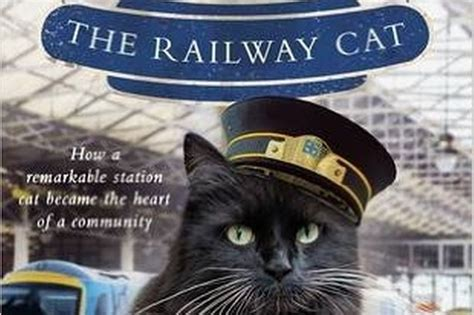 felix the railway cat cat daily news