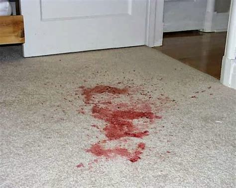 Blood Out Of Mattress by Cleaning Ink Blood Stains From Your Carpet Premium
